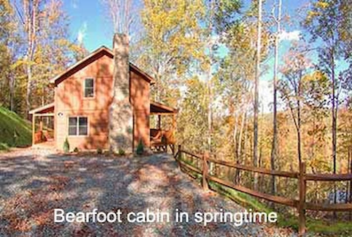 Bear Foot Cabin, great views, near  Valle Crucis - Banner Elk