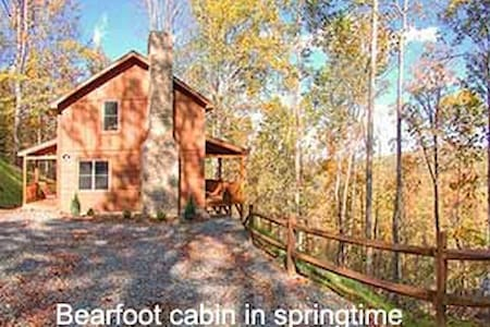 Bear Foot Cabin, great views, near  Valle Crucis - Banner Elk - Cabin