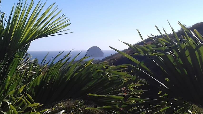 vue de la terrasse sur le rocher du Diamant