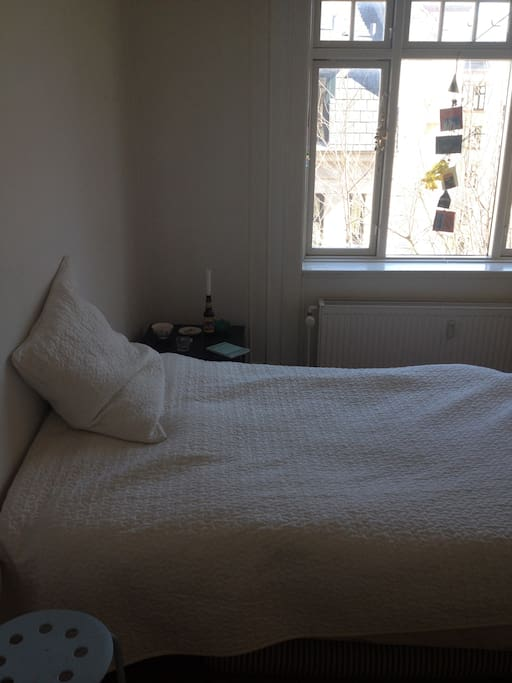 The bed and window