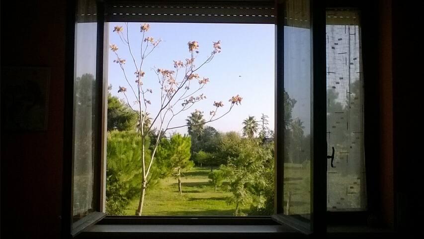 Lovely apartment in Montesilvano - Montesilvano - Huoneisto
