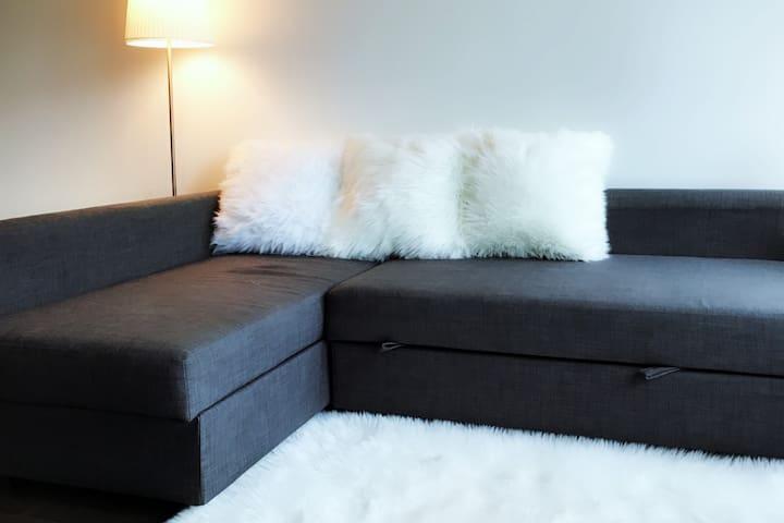 L shape sofa w plush pillows and carpet