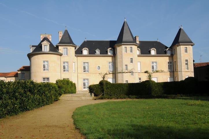 Suite familiale au château de la Bergelière - La Flocellière - Bed & Breakfast