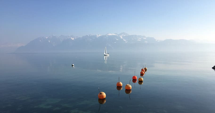 Sailing & Rowing in Vevey.