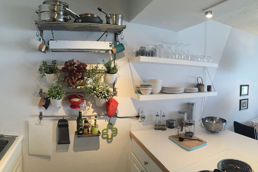 Floating shelves and a hanging wall garden with herbs and kitchen items.