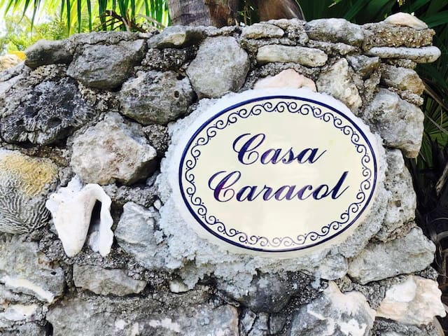 The World Famous Seashell House ~ Casa Caracol