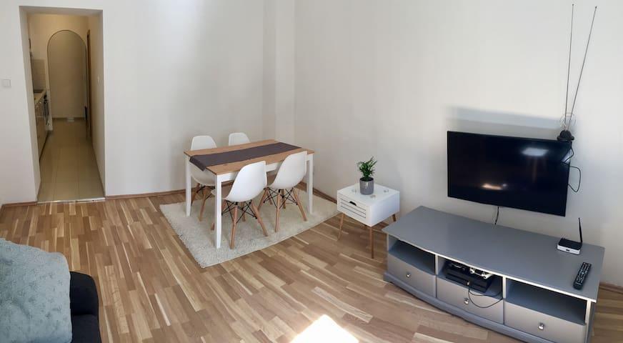 Andel apartment