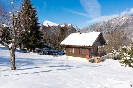 Charmant chalet avec 3 chambres, cheminée, jardin