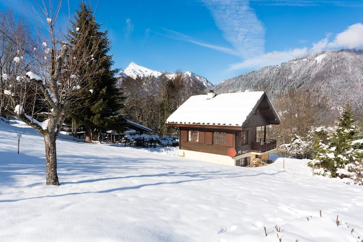 3 bedroom chalet with log fire, garden, great view