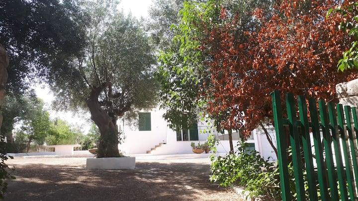 Villa con vista a Polignano a Mare