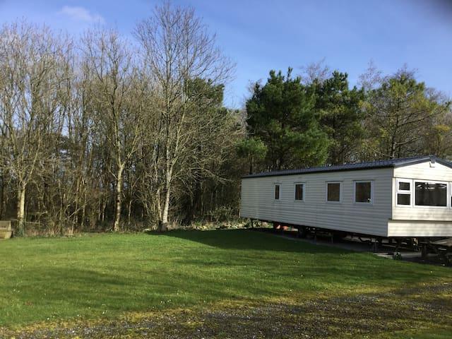 Woodland Retreat - Beechwood - Devon - その他