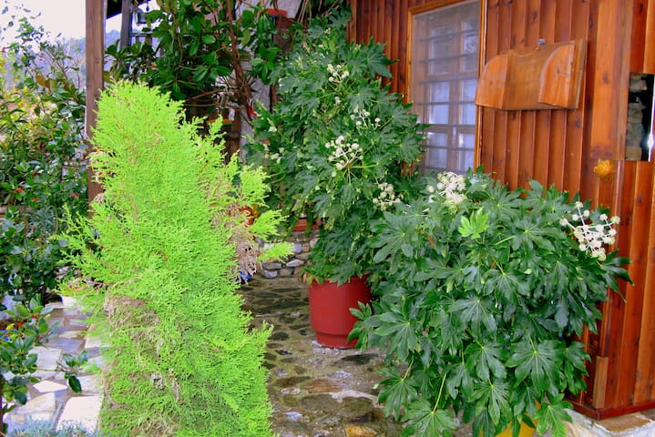 Traditional Guesthouse Erato - Anatolikos Olympos - Bed & Breakfast