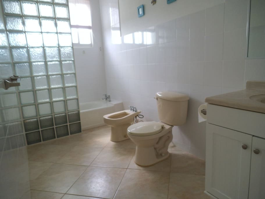 Tub & shower, bidet, toilet and wash basin.