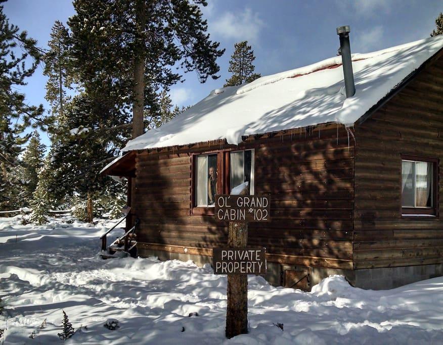 Ol 39 grand cabin near grand lake co cabins for rent in for Grand lake colorado cabin rentals