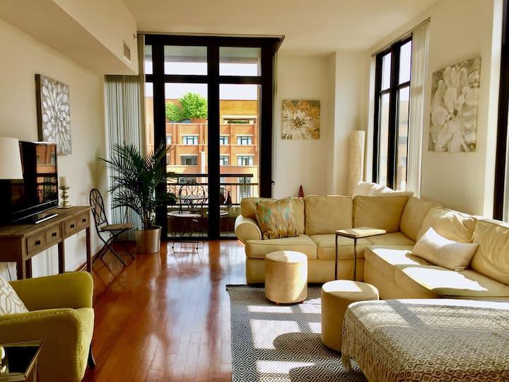 Luxury Penthouse Best neighborhood!