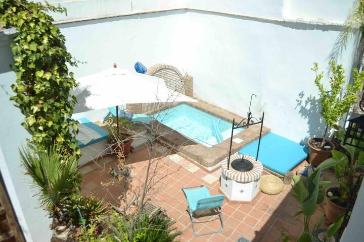 Albaicin, swimming pool, palms