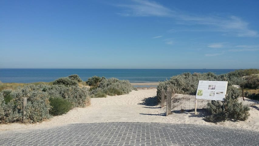 Unit 5 doors from the beach - Semaphore Park - Apartamento