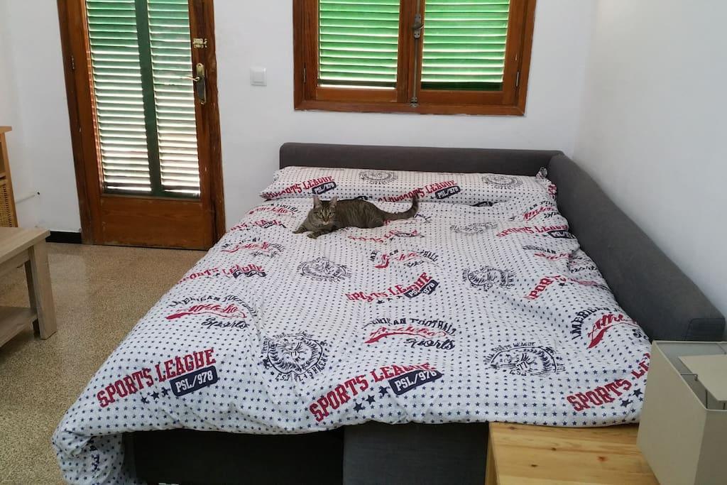 Sofa-Cama doble para los acompañantes. Hasta 2 dultos con comodidad y varios niños sin problemas.