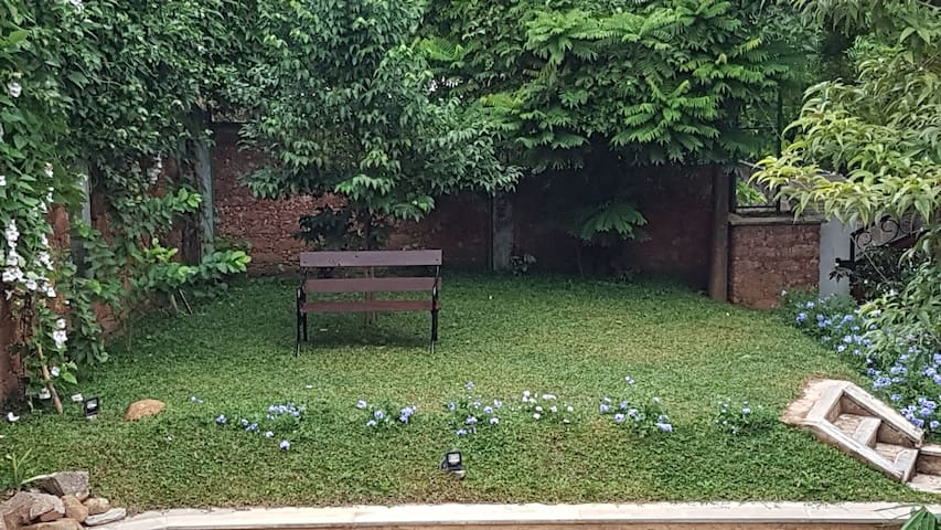 Garden with greenery