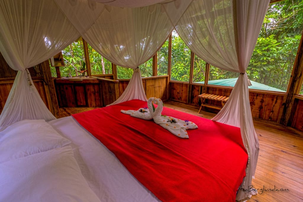 Casa Perezosa bedroom - king bed with 360 jungle views!