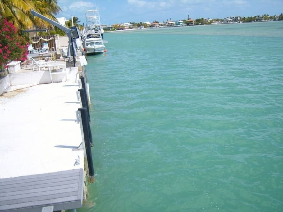 Easily some of the clearest water in the Keys.