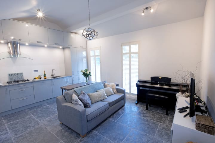 Luxury 1 bedroom Apartment in the Park