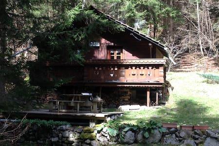 Petit Chalet de montagne - Passy - Dům