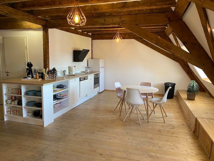Appartement Haguenau 6 pers- 200 m2 Centre ville