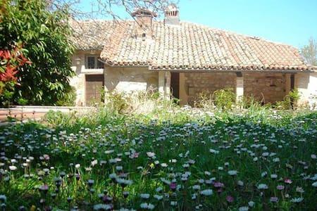 """Paradiso House P1 -""""Casa di Checco"""" - Seppio - Vila"""