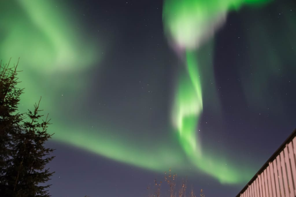 Northern Lights above my house