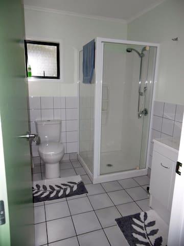 Bathroom - shower, toilet and wash basin