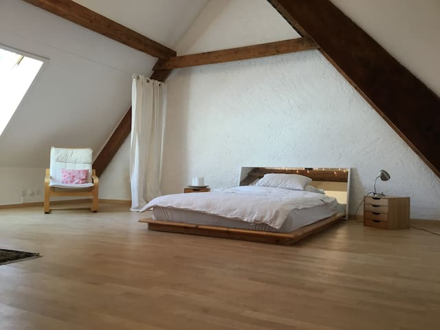 bright and clean double room in lovely house - Basel - Rumah