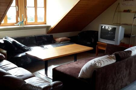 Cosy 2 room appartement in the heart of franconia - Bad Windsheim - Apartament