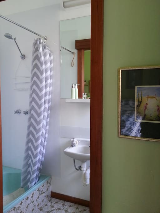 Ensuite with shower,  hand basin and toilet facilities.