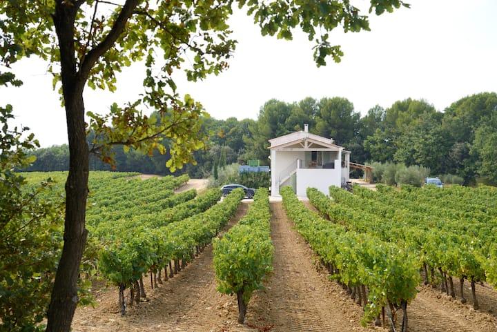 Dépendance dans les vignes avec terrasse et jardin