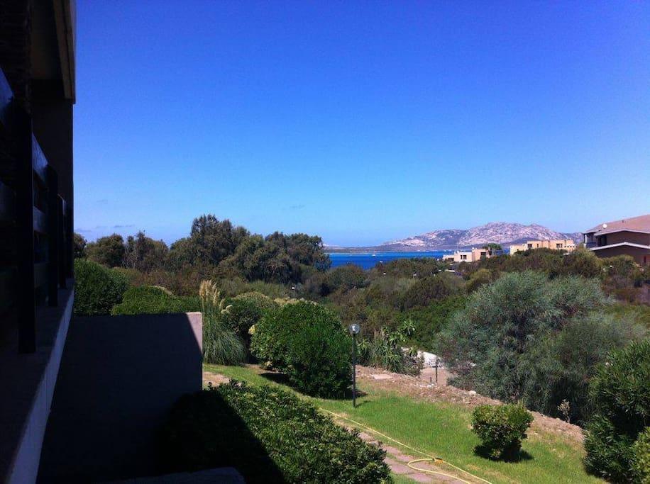 Isola dell'Asinara vista dal balcone