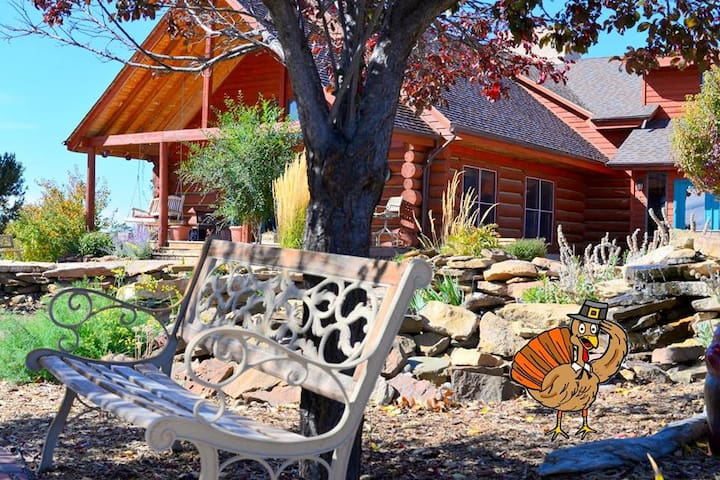 Sophia's Near Mesa Verde (mesa 1) - Dolores - Bed & Breakfast
