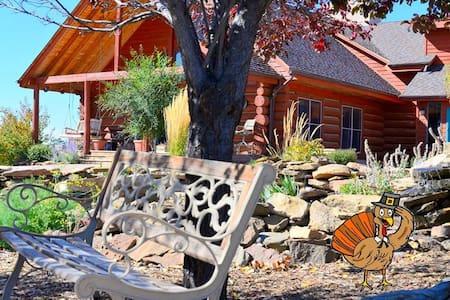Sophia's Near Mesa Verde (mesa 1) - Dolores