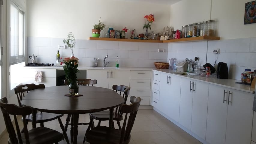 Spacious Penthouse with Dead Sea View - Jerozolima - Apartament