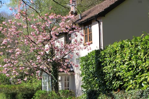 Pretty 2 bed Cottage in Wye Valley AONB
