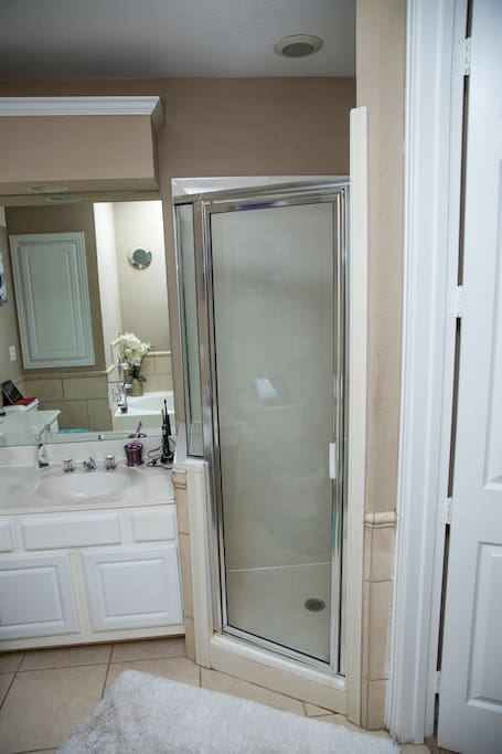 Option of Stand up shower