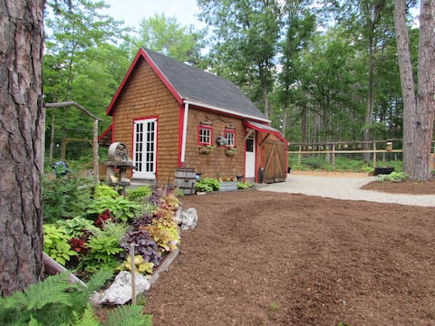 Rustic, artsy, tiny home on a beautiful homestead