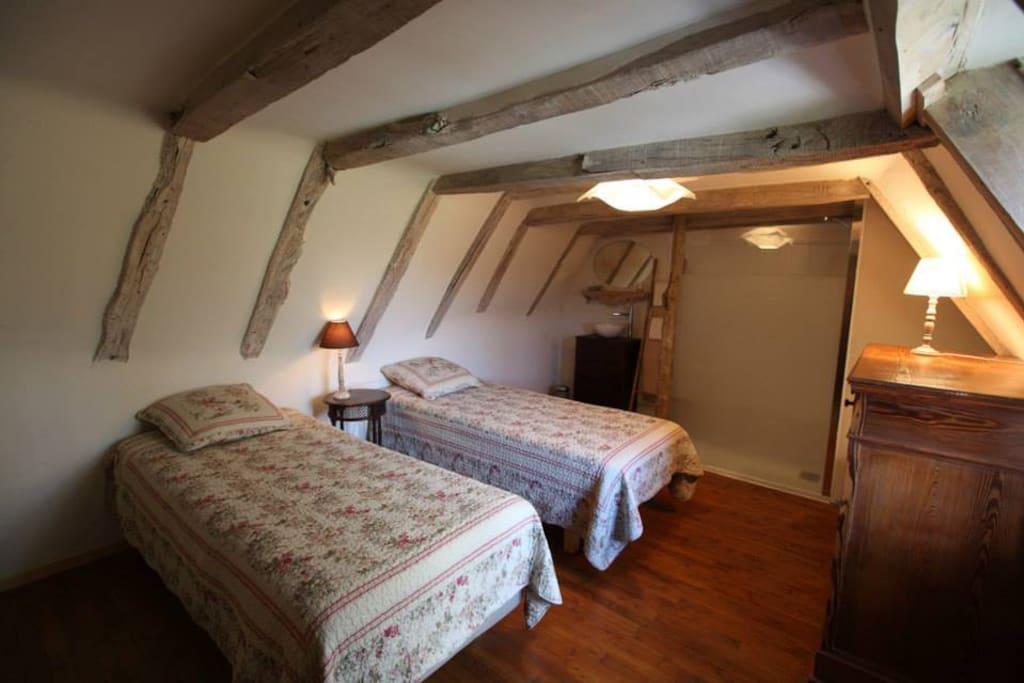 Chambre Redon et sa salle d'eau 17.5 M2 possibilité de rapprocher les lits.
