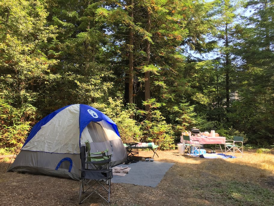 """There are 3 campsites to choose from on a """"first come"""" basis."""