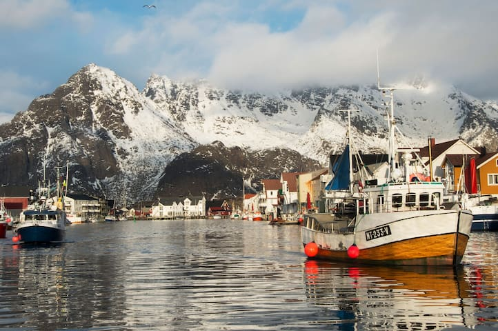 Rent a room in Lofoten - Vågan - Daire