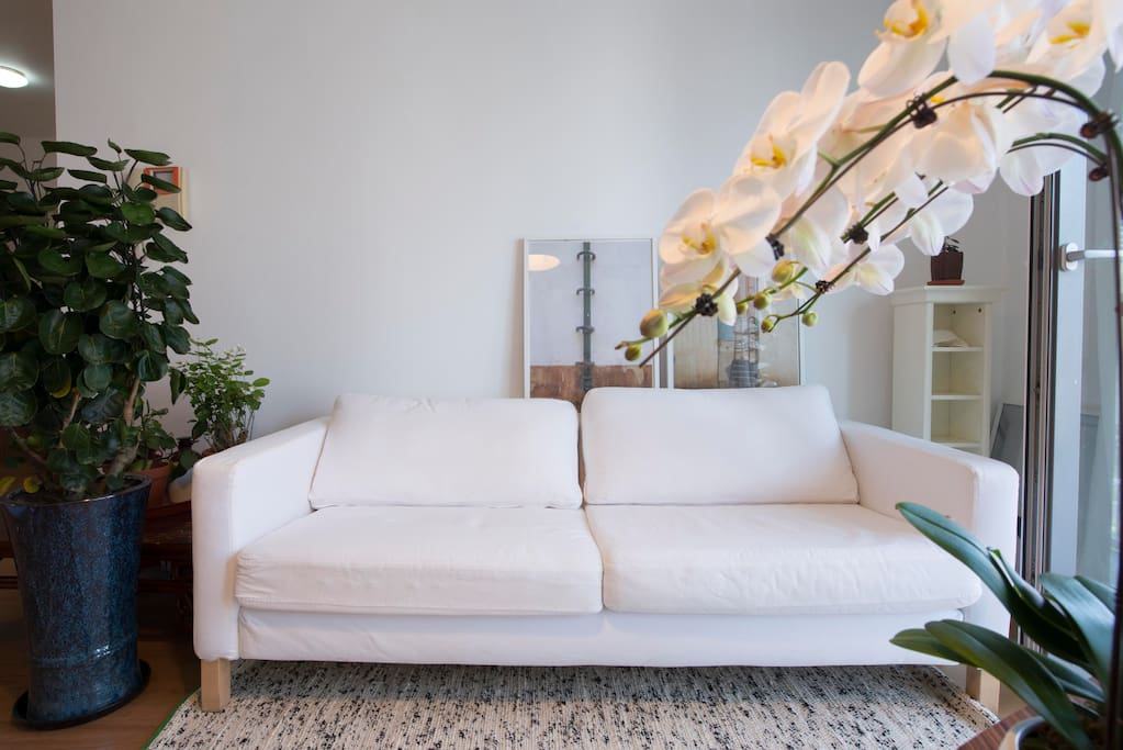 工作空间 Living room(studio)