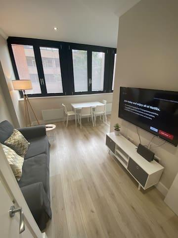 Surrey Street Apartment