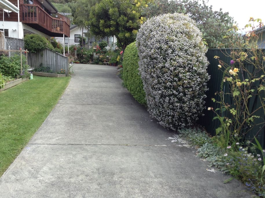 Driveway; pass the front house to get to mine!
