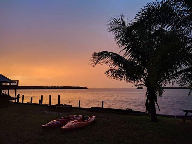 Pura Vida - Tropical Getaway Overlooking Tampa Bay