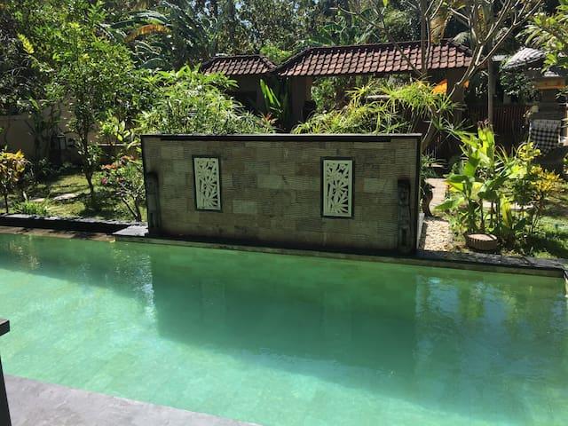 Lovina - North Bali - Lovely 2 BR Villa with pool